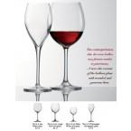Delicioso Vap 33cl Vin Blanc